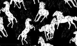 30648C01 Coleção Haras cavalos fundo preto