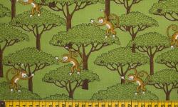 db048c02-macacos-verde-dbtric
