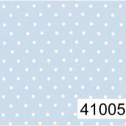 41005C02