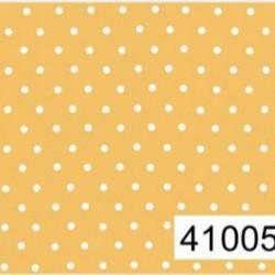 41005C04