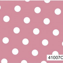 41007C01