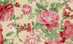 29050C01 Coleção Roses in Bloom Flores Grandes Bege Rosa Verde
