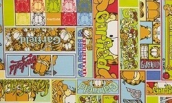 GA002C01  Coleção Garfield