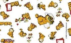 GA006C01  Coleção Garfield