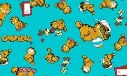 GA006C02  Coleção Garfield