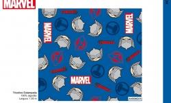 Catalogo Colecão Marvel Fernando Maluhy Thor AV008C01