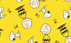 sn015c01-cole%c3%a7%c3%a3o-snoopy-charlie-brown
