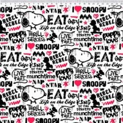SN017C01 Coleção Snoopy snoopy graffiti
