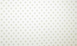 vg023c04-cole%c3%a7%c3%a3o-majestade-flor-de-lis-bege-fundo-branco